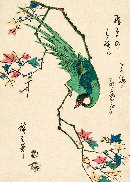 Japanese birds art prints, Green Pheasant Hiroshige FINE ART PRINT, japanese art prints, posters, woodblock prints, paintings reproductions