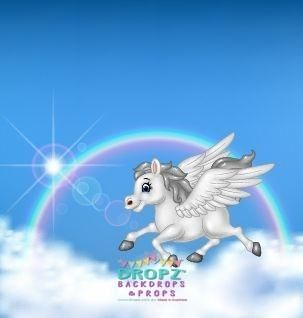 Rainbow Pony  #backdrops #backdrop #photography #backdropsaustralia #cakedrop #scenicbackground #photobackground #vinylbackdrop #dropzbackdrops #photographybackdrop