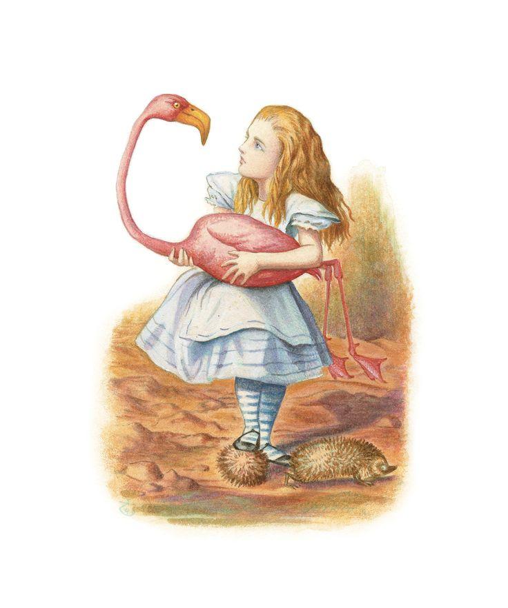Алиса в стране чудес картинки иллюстрации