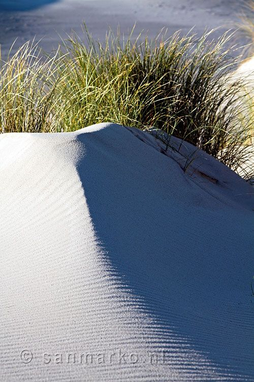 Sanddunes on the island of Terschelling Holland.