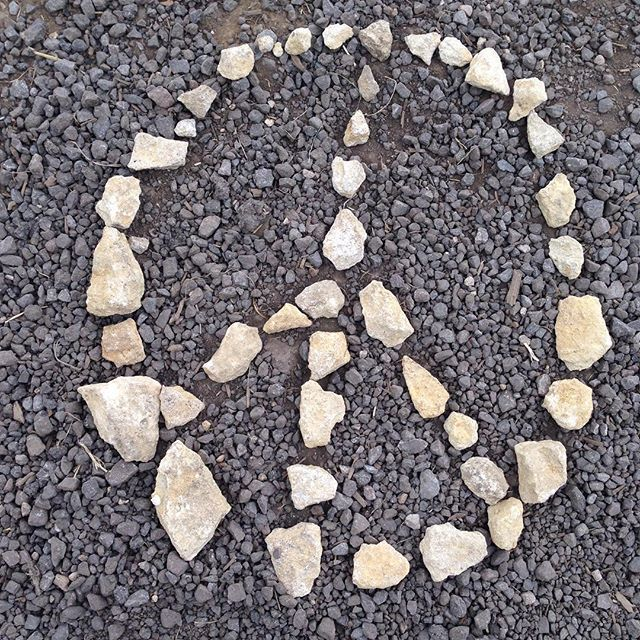L O V E & P E A C E &  F U N N Y B U N N I E S ✌️. #funnybunnies #bunnies #hairbands #haargummi #armcandy #love #peace #armband #followme #instagood #instadaily #stones #funnybunnieshairbands