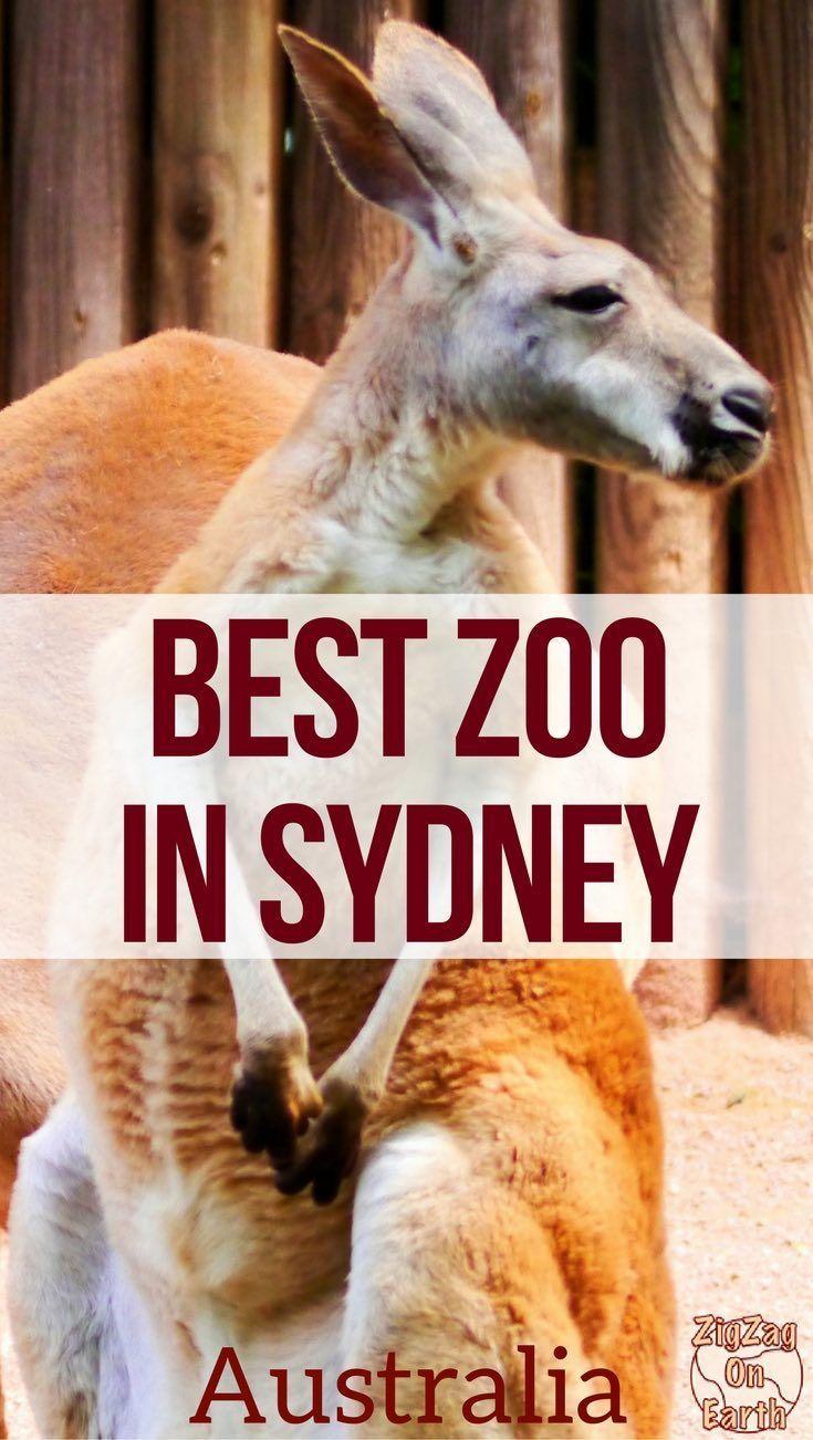 Best Zoo In Sydney Taronga Featherdale Park Wildlife Sydney Zoo Sydney Australia Travel Australia Travel Western Australia Travel
