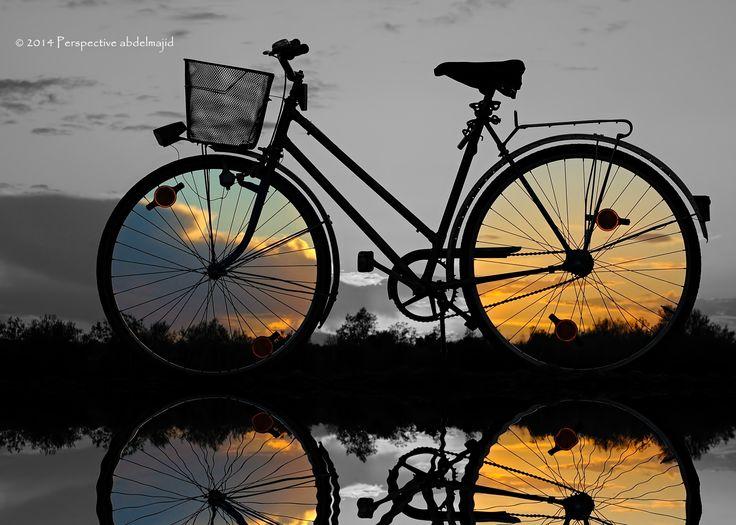 842 mejores im genes sobre bicicletas en pinterest - Cestas para bicicletas ...