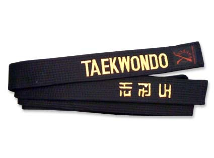 black belt thesis tae kwon do Junior black belt test essay by mikko bernardo written may 27, 2017 a black   the tenets of taekwondo: courtesy, integrity, perseverance,.