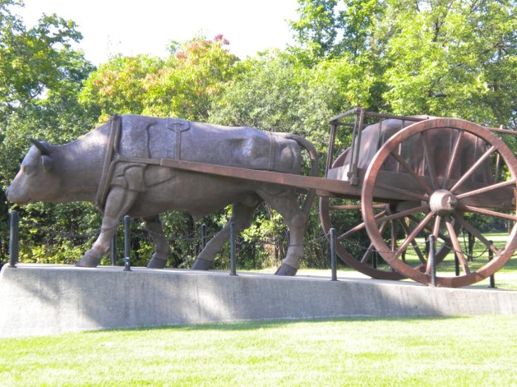 Red River Cart and Oxen at south entrance Assinaboine Park Winnipeg, Manitoba