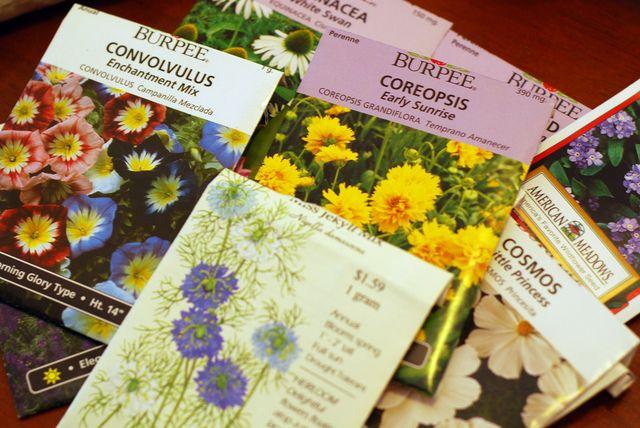 1000 ideias sobre calendrier des semis no pinterest le potager hortas e cortes. Black Bedroom Furniture Sets. Home Design Ideas