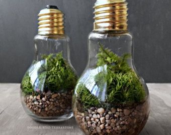 woodland garden terrarium avec maison miniature et par doodlebirdie terrarium pinterest. Black Bedroom Furniture Sets. Home Design Ideas