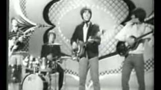 Grass Roots   Let's Live For Today -1967   YouTube