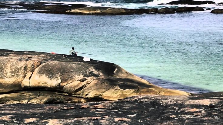 A video of my Great Southern Roadtrip to Pemberton, Gloucester Lookout Tree, Gloucester Park, Dave Evans Bicentennial Tree, Denmark, Greens Pool, Peaceful Bay, Walpole, Valley of the Giants, Tree Top Walk, Big Tingle Tree, Ancient Empire, Albany, The Gap, The Natural Bridge, Bluff Knoll, Brig Amity