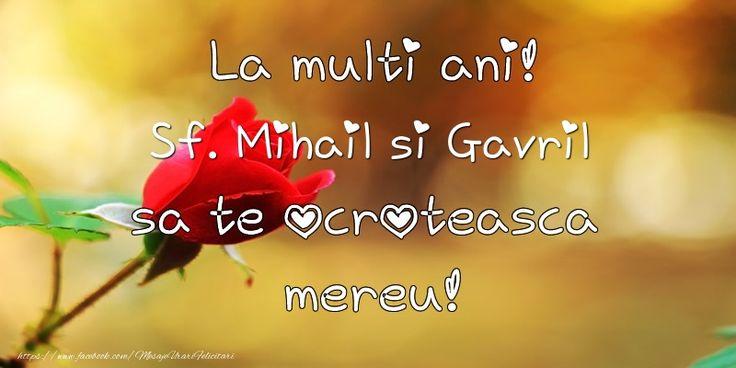 La multi ani! Sf. Mihail si Gavril sa te ocroteasca mereu!