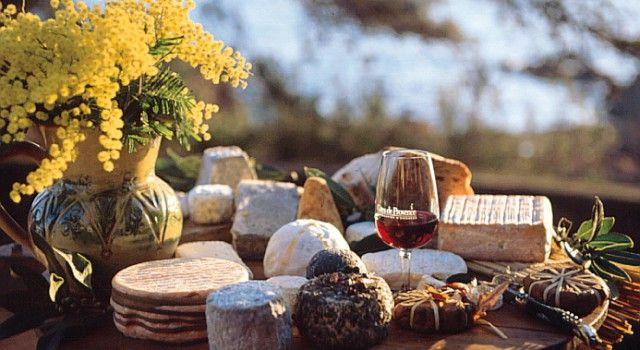 Cours d'œnologie à la Maison des Vins de Côtes de Provence
