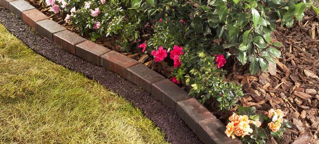 This is exactly how I want my flower bed to look