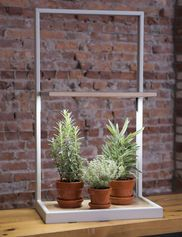 LED Grow Light Bulb - Miracle LED® Ultra Grow Light Bulb