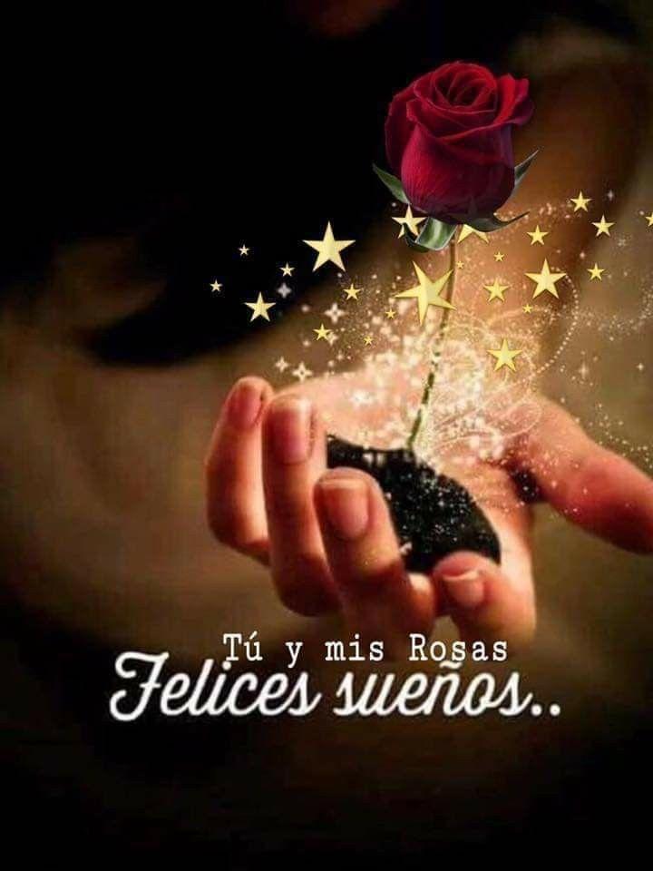 Pin De Maribel En Saludos De Buenas Noches Mensajes De Buenas Noches Buenas Noches Con Flores Saludos De Buenas Noches