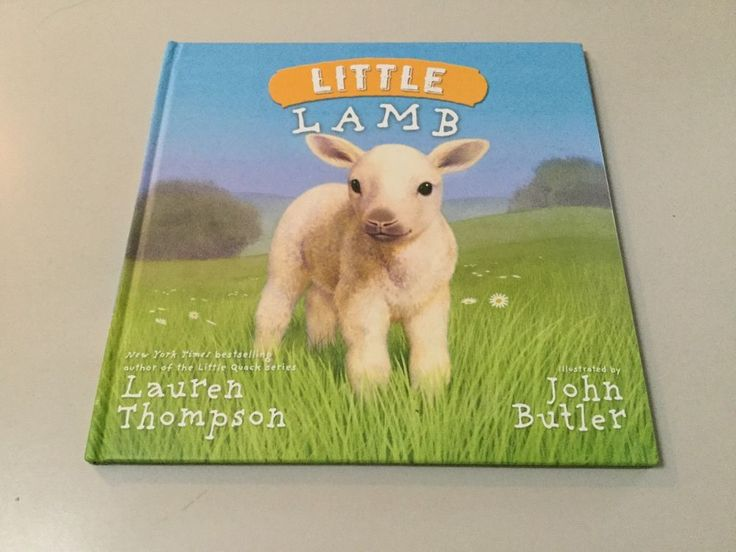 LITTLE LAMB BY LAUREN THOMPSON, YOUNG READER, HARDCOVER **NEW**