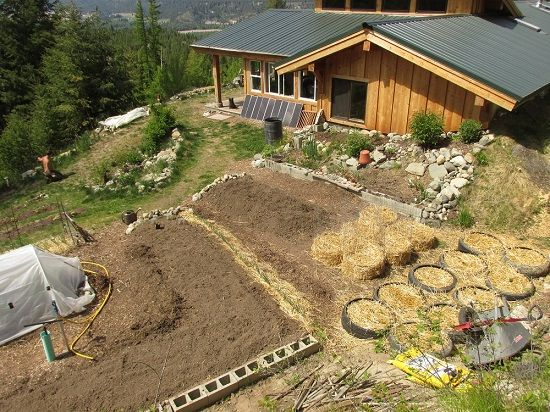 Avoiding The Pit Falls Of Failing As A New Homesteader - Homesteading and Livestock - MOTHER EARTH NEWS