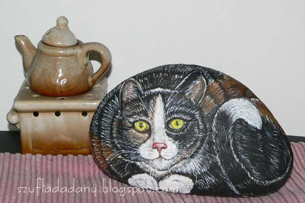 kot/cat/Katze/matou