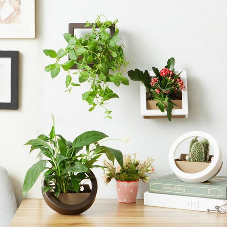 Plastic Wall Hanging Flower Plant Pot Planters Round Square Baskets Garden from ebay
