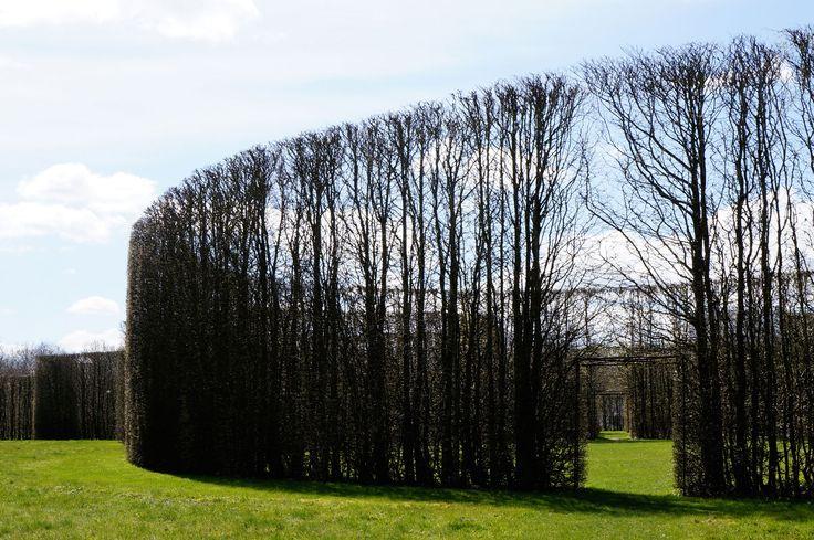 De Geometriske Haver