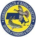 Best Bets For Fishing  Looking for the waterbodies where big fish are located? MassWildlife has kept records of trophy size fish locations t...