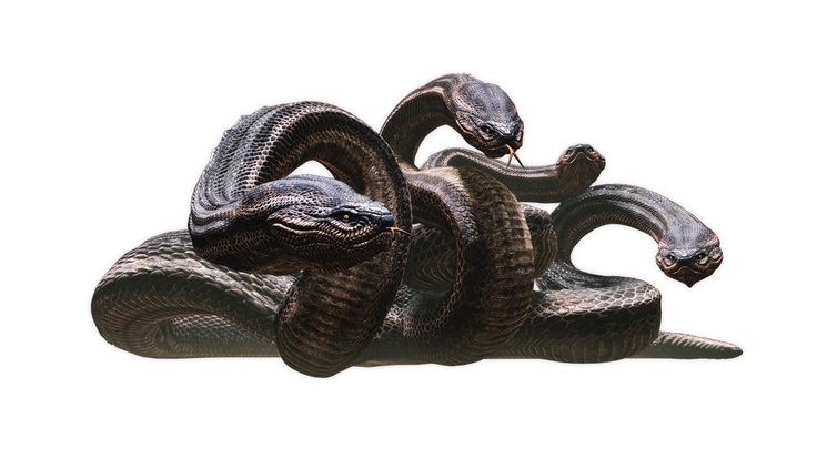 Jeebuz, these creature renders are amazing... Another one from Dragon's Dogma. I am thinking this is the dreaded Hydra.