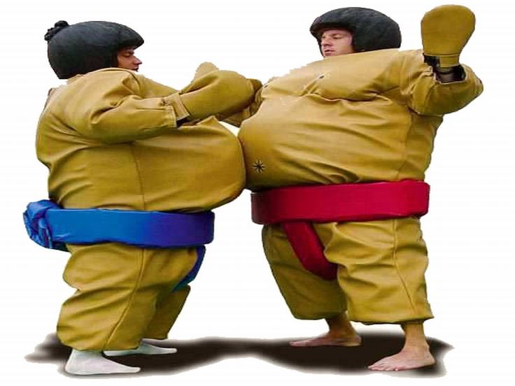 Buy cheap and high-quality Sumo Wrestling Suit. On this product details page, you can find best and discount Inflatable Games for sale in 365inflatable.com.au