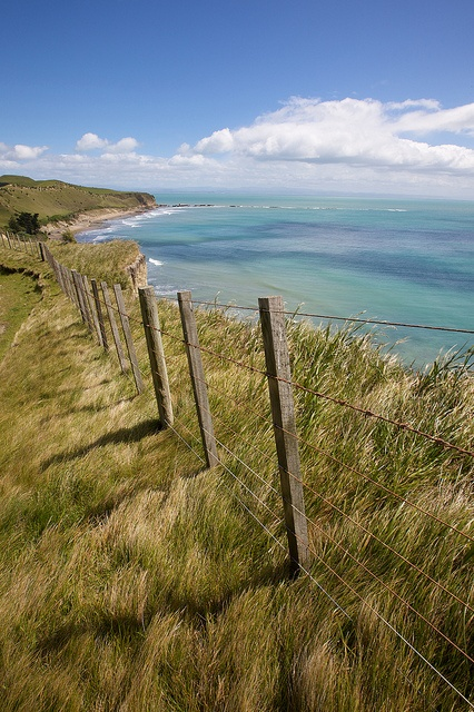 Cape Kidnappers, North Island, New Zealand