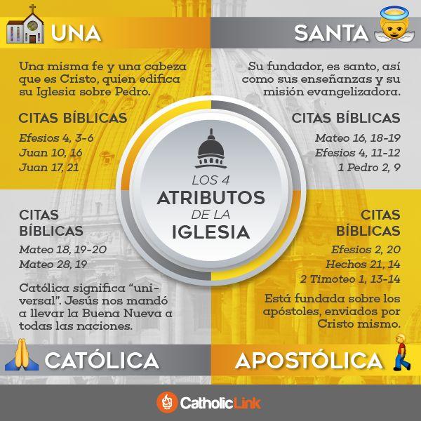 Infografía: Los 4 atributos de la Iglesia Católica (Una, Santa, Católica y Apostólica)