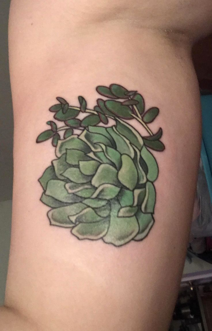 Succulent tattoo on inside right bicep by Jocelyn at Wildside Tattoo in Myrtle Beach, South Carolina