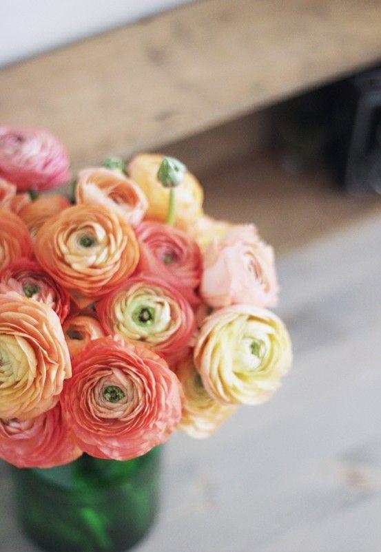 I need flower ....Renoncule , rose , freesia