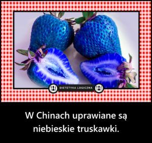 W Chinach uprawiane są  niebieskie truskawki