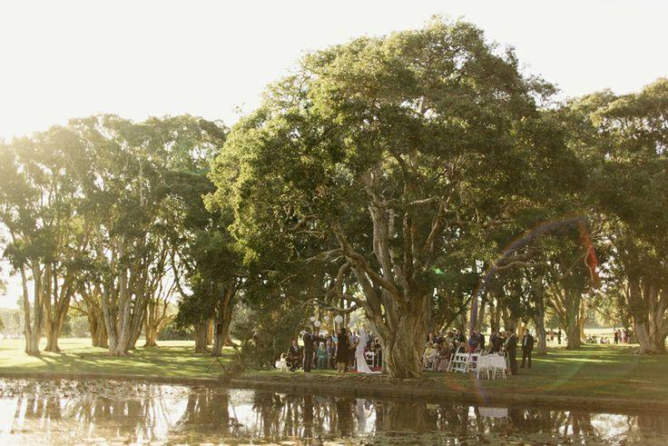 centennial park sydney wedding