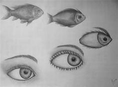 Pics For > Morphing Drawings