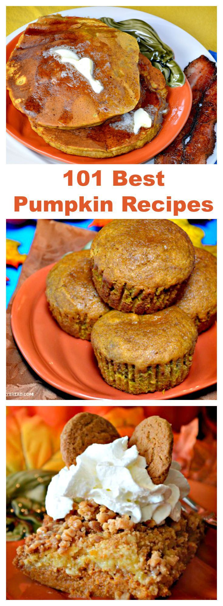 101 Best #Pumpkin #Recipes  - Are you ready for #fall?  If not, you can get ready with 101 pumpkin recipes plus pumpkin carving and non carving ideas.  I even added some pumpkin crafts.  If you love fall, this post is for you.