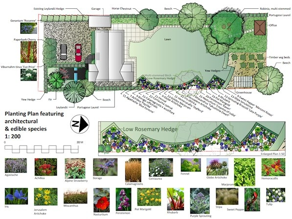 114 Best Images About Landscape Drawings On Pinterest | Gardens