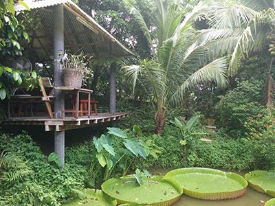 Went to really small restaurant called House no. 1 that happened to have a really beautiful garden. Lots of plants that I have never seen before but the giant lily pads took the cake.