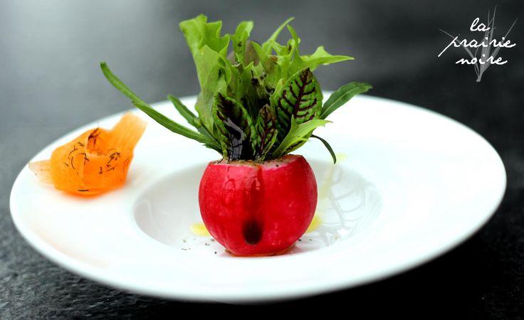 Großer gemischter Beilagensalat. Radieschen, gemischte Blattsalate, Blutampfer, Rucola und Möhrenschleife mit einer Balsamico-Rapsöl-Dill-Vinaigrette.