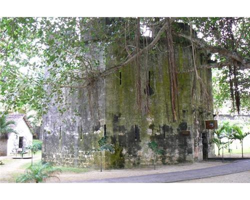 Mauritius Pointe Aux Cannoniers