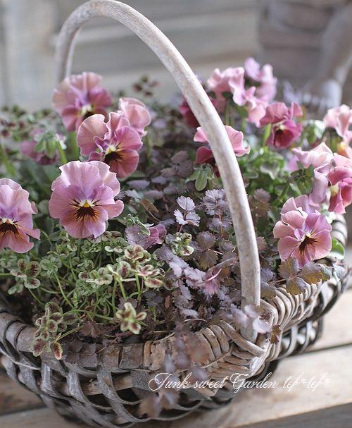 ~Spring Forward~