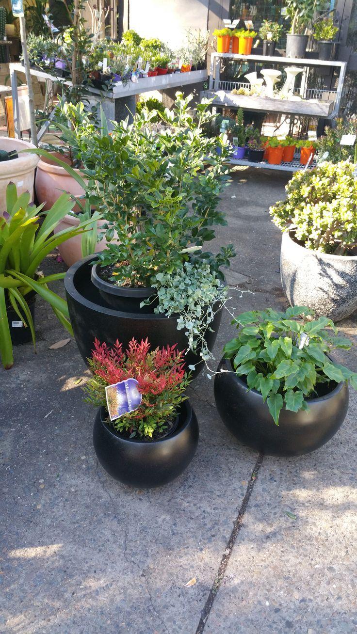 Group of terrazzo black pots