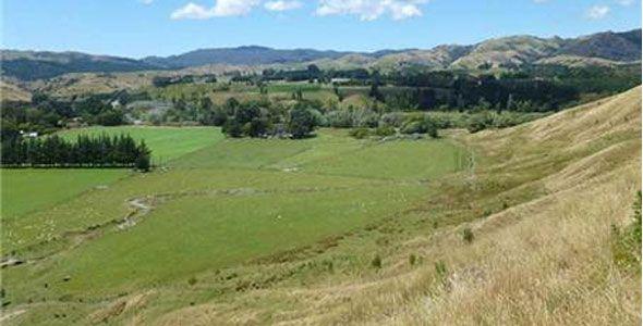 Māori home loan scheme not so popular
