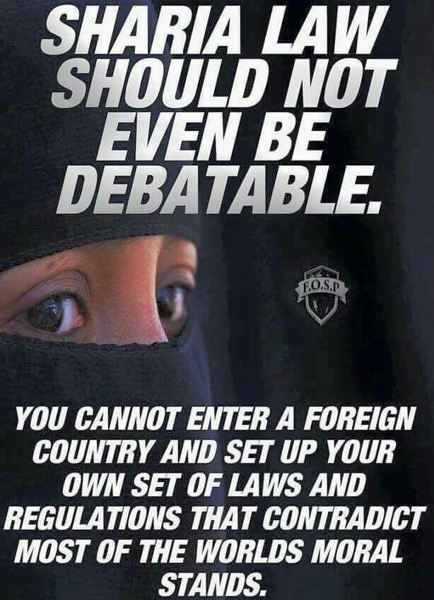 Another Pinner said: No sharia law!! No sanctuary cities!!