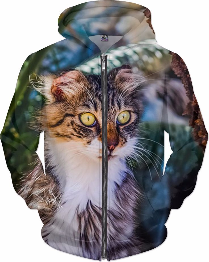 Check out my new product https://www.rageon.com/products/funny-cat-hoodie-1?aff=BWeX on RageOn!