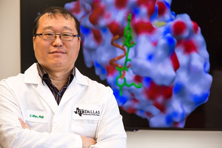 Dr. Jung-Mo Ahn, associate professor of chemistry and biochemistry at The University of Texas at Dallas, has designed a small molecule that could help breast cancer patients for whom current treatments no longer work. In a paper published recently in the online journal eLife, Ahn and his...