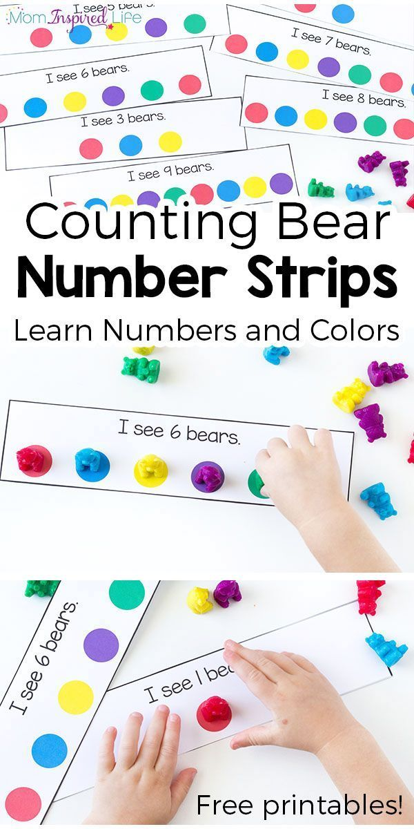 Counting Bears Number And Color Activity Toddlers