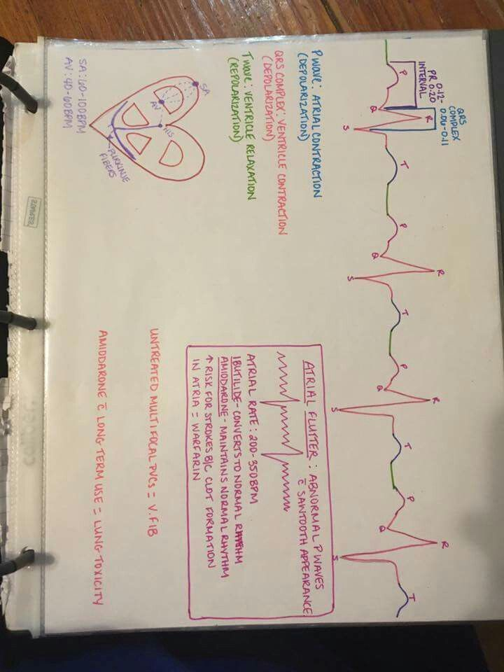 Lpn Nursing Nursing School Notes Nursing Goals