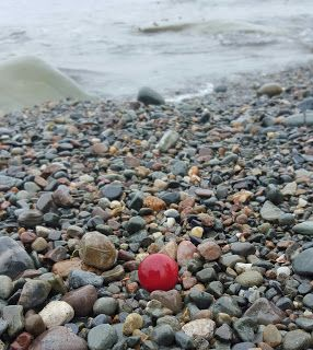 5 Tips To Finding Beautiful Sea Glass. The Glass Is In The Rocks. Sea Glass Art Nova Scotia. #seaglass #5tips #findingseaglass #beachcombing #novascotia #beachglass #redseamarble