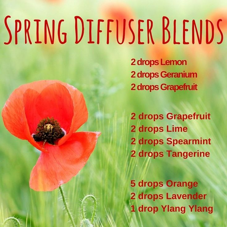 Spring Diffuser Blends Recipe - Bulk Apothecary Blog  Great recipes to brighten up your home.