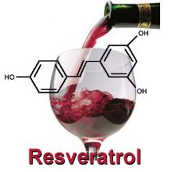 Resveratrol : The Super Compound That May Help Radiation Treatment