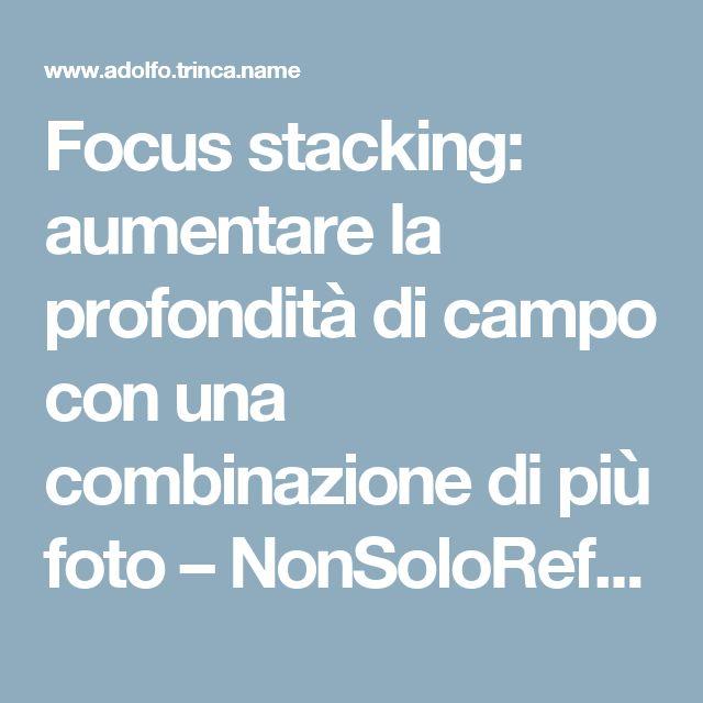 Focus stacking: aumentare la profondità di campo con una combinazione di più foto – NonSoloReflex